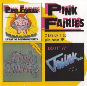 Pink Fairies - Live At The Roundhouse / Previously Unreleased / Twink And The Fairies 1975 / 1977