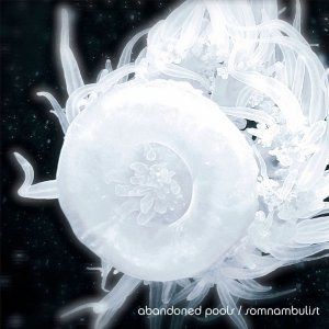 Abandoned Pools - Somnambulist (2013)