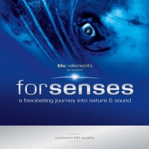 Blu elements project - Forsenses [DTS] (2009)