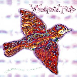 Widespread Panic - 'Til The Medicine Takes (1999)