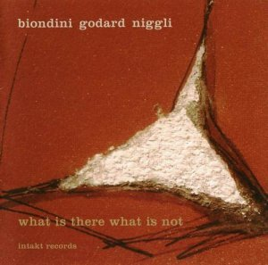 Luciano Biondini - What Is There What Is Not (2011)
