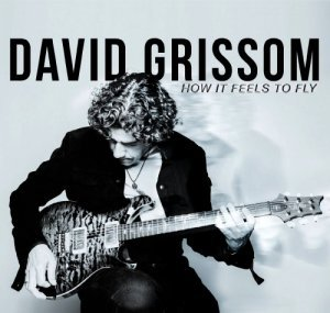 David Grissom - How It Feels To Fly (2014)