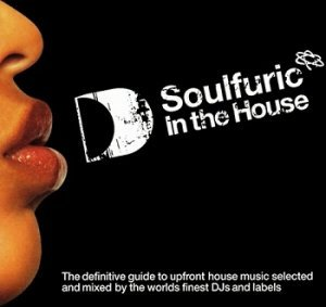 Va soulfuric in the house 2004 lossless music for House music 2004