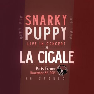 Snarky Puppy - Live In Concert At La Cigale (2015)