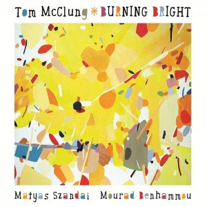 Tom McClung - Burning Bright (2015) [HDTracks]