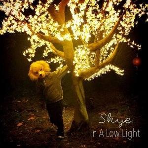 Skye - In A Low Light (2015)