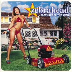 Zebrahead - Playmate Of The Year [SACD] (2000) PS3 ISO + HDTracks