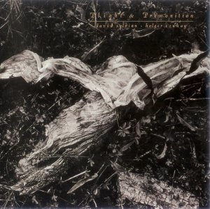 David Sylvian & Holger Czukay - Plight & Premonition (1988)
