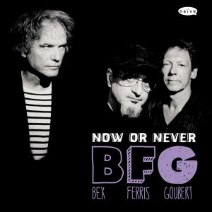BFG (Bex, Ferris & Goubert) - Now Or Never (2013)
