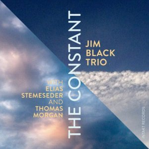 Jim Black Trio with Elias Stemeseder & Thomas Morgan - The Constant (2016) [HDtracks]
