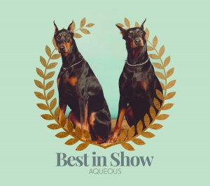 Aqueous - Best in Show (EP) (2016)