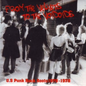 VA - From The Velvets To The Voidoids: US Punk Rock Roots 1970-1978 [2CD] (2007)
