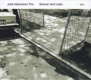 Julia Hulsmann Trio - Sooner & Later (2017) [Hi-Res]