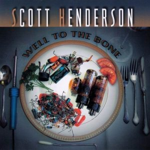 Scott Henderson - Well To The Bone (2002)