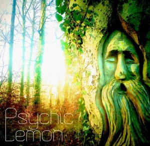 Psychic Lemon - Psychic Lemon (2016)