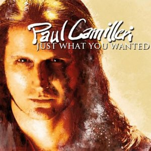 Paul Camilleri - Just What You Wanted (2011)