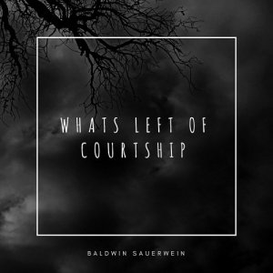 Baldwin Sauerwein - Whats Left of Courtship (2018)